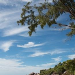 Anse Cocos beach 1