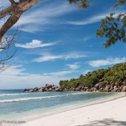 Anse Cocos beach 4