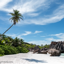 Anse Cocos Beach 7