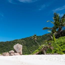 Anse Cocos Beach 10