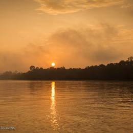 Sunrise - Kinabatangan River (Borneo)