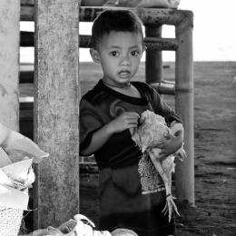 Boy caught a chicken