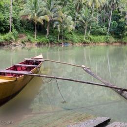Bohol - Loboc River - near Nuts Huts